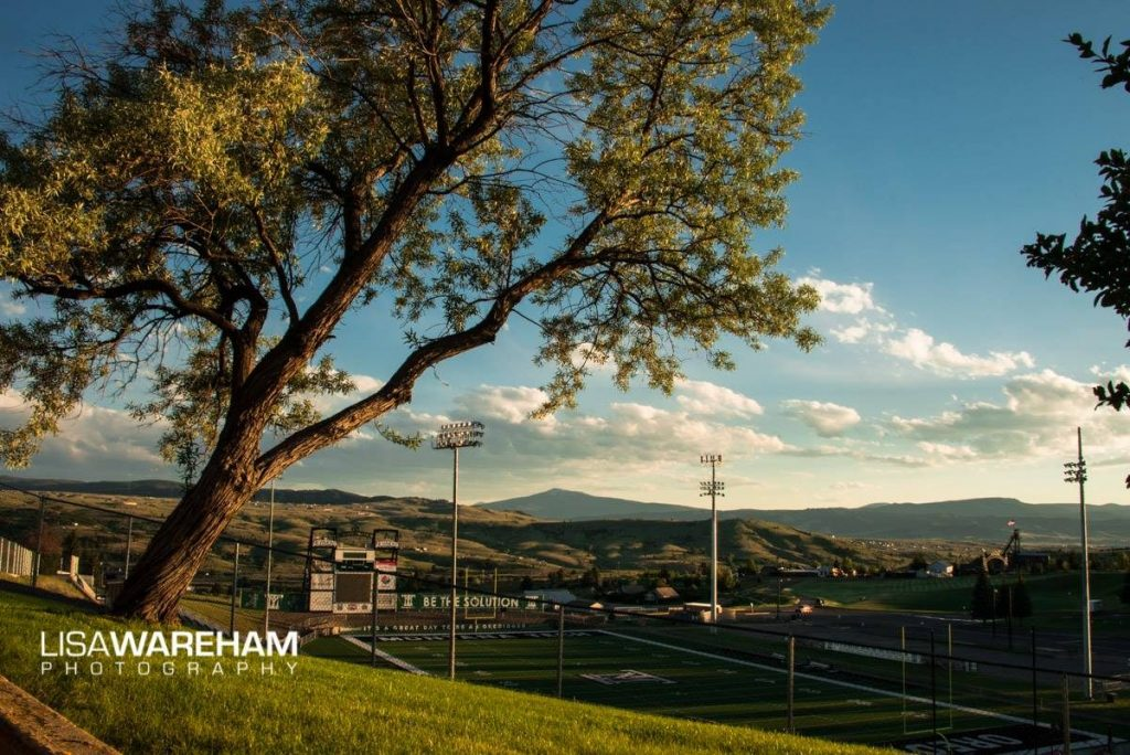leaning-tree-montana-tech-football-field